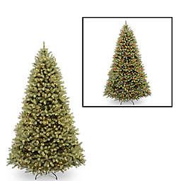 National Tree Company 9-Foot Downswept Douglas Fir Pre-Lit Christmas Tree with Dual Color Lights