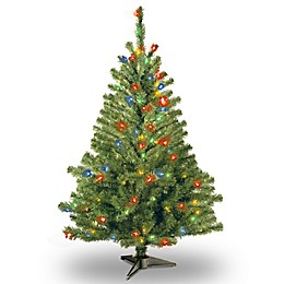National Tree Company 4-Foot Kincaid Spruce Christmas Tree with Multi-Colored Lights