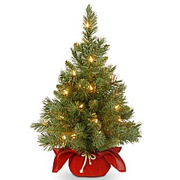 National Tree Company 2-Foot Majestic Fir Pre-Lit Christmas Tree with Clear Lights and Burgundy Base