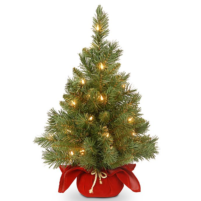 Alternate image 1 for National Tree Company 2-Foot Majestic Fir Pre-Lit Christmas Tree with Clear Lights and Burgundy Base