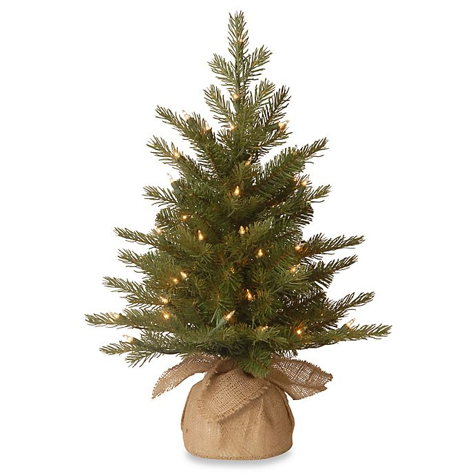 Alternate image 1 for National Tree 2-Foot Nordic Spruce Christmas Tree