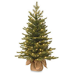 National Tree 3-Foot Nordic Spruce Christmas Tree