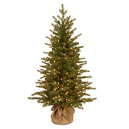 National Tree Feel-Real® 4-Foot Nordic Spruce Pre-Lit Christmas Tree with Clear Lights