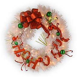 National Tree Decorative Collection 24-Inch  Ho Ho Ho Christmas Wreath Pre-Lit with 50 Lights