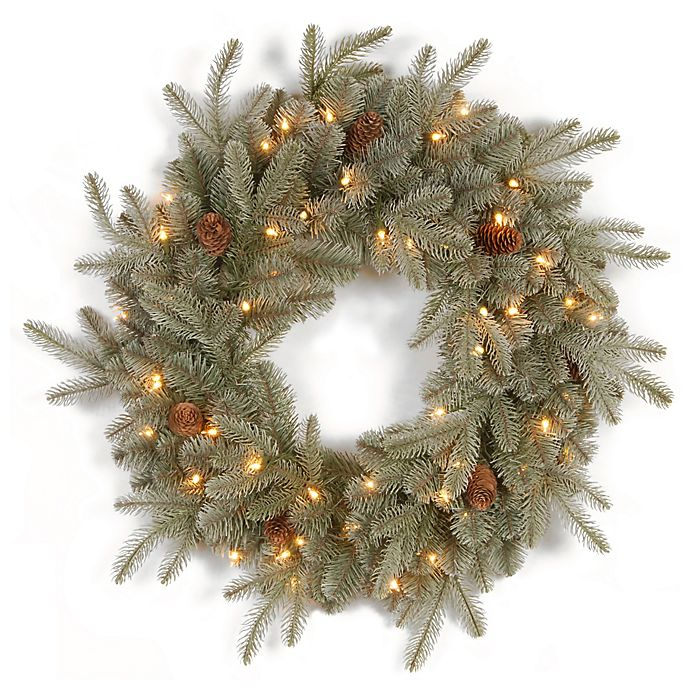 Alternate image 1 for National Tree 24-Inch Feel-Real® Frosted Arctic Christmas Spruce Wreath with Clear Lights
