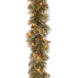 National Tree Company 9-Foot Pre-Lit Glittery Bristle Pine Garland with Clear Lights