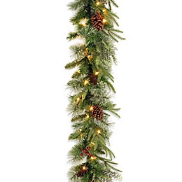 National Tree Company 9-Foot Colonial Pre-Lit Garland with Color Changing LED Lights