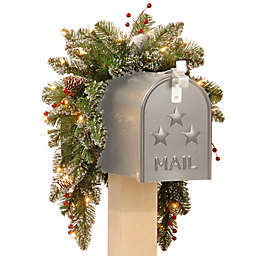 National Tree 3-Foot Mountain Spruce Pre-Lit Mailbox Swag with Warm White Lights