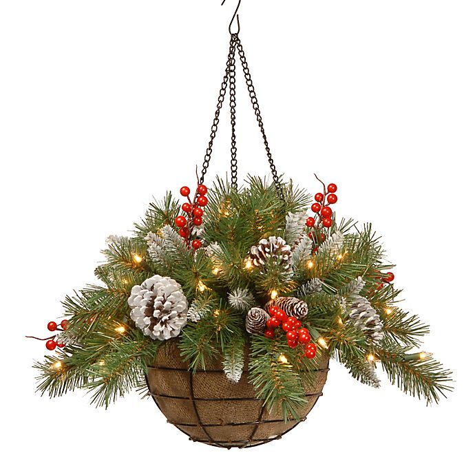 Alternate image 1 for National Tree 20-Inch Frosted Berry Pre-Lit Hanging Basket with Warm White Lights