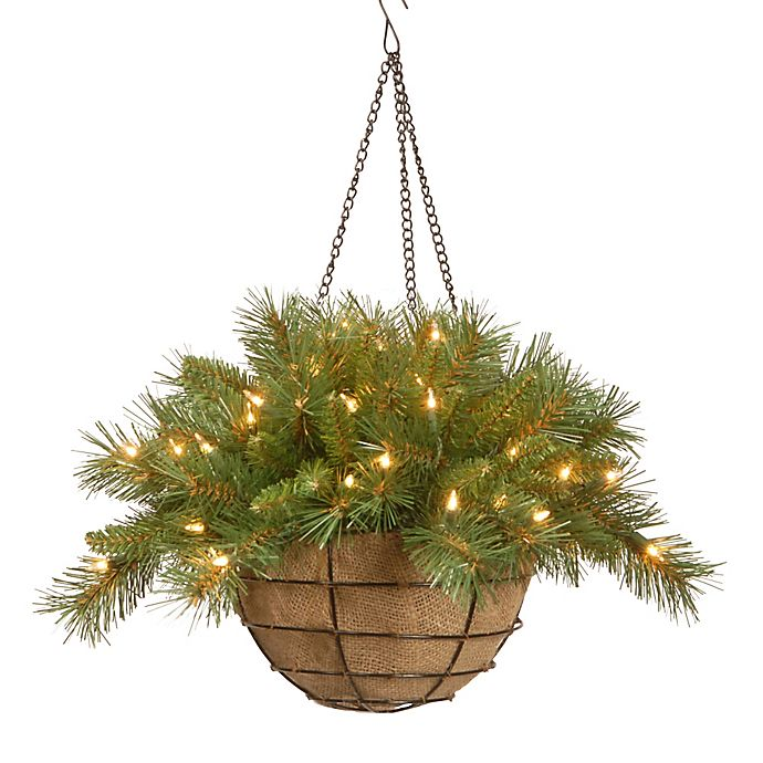 Alternate image 1 for National Tree Company 20-Inch Tiffany Fir Hanging Basket with Warm White LED Lights