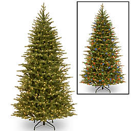 National Tree 7.5-Foot Nordic Spruce Slim Pre-Lit Christmas Tree with Dual Color® Lights