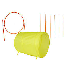 Outward Hound Outdoor Agility Starter Kit
