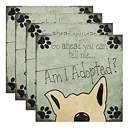 "Thirstystone® ""Am I Adopted?"" Coasters (Set of 4)"