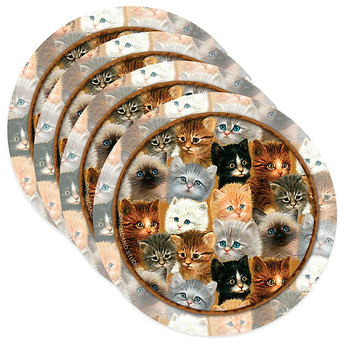 Alternate image 1 for Thirstystone® Kittens Coasters (Set of 4)