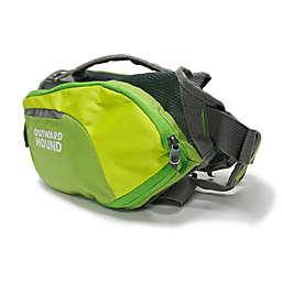Outward Hound® DayPak™ Large Dog Backpack in Green