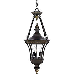 Quoizel Devon Outdoor Hanging Lantern in Imperial Bronze