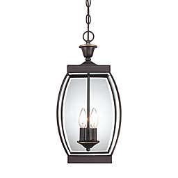 Quoizel® Oasis Hanging Outdoor Lantern in Medici Bronze
