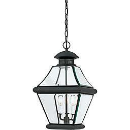Quoizel® Rutledge Outdoor Large Hanging Lantern in Mystic Black
