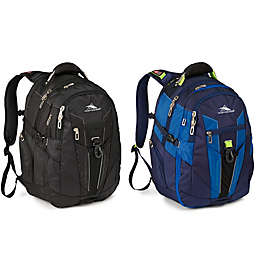 High Sierra® XBT Laptop Backpack