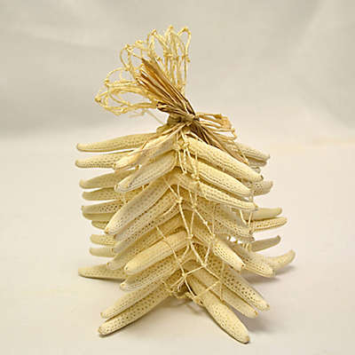 10-Piece Starfish Bundle
