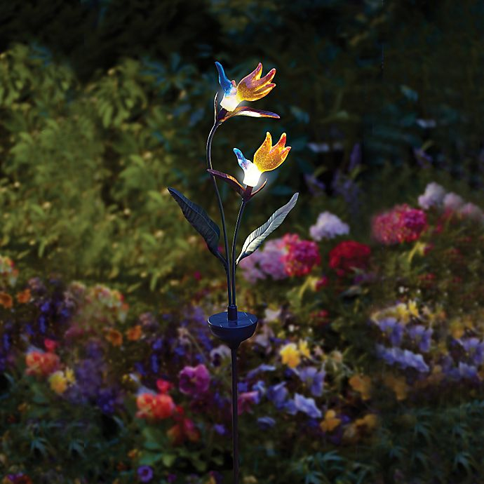 Solar Powered Birds Of Paradise Lighted Garden Stake Bed