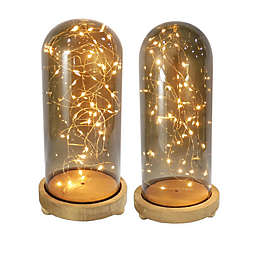 Bee & Willow™ Glass Cloche with LED Fairy Lights