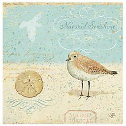 Thirstystone® Coastal Natural Seashore Coaster