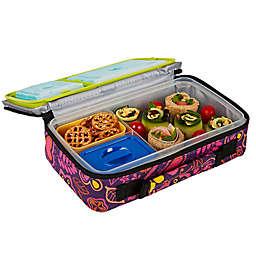 Fit & Fresh® Bento Lunch Box Kit