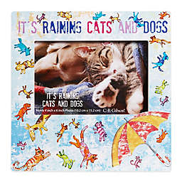 """CR Gibson """"It's Raining Cats and Dogs"""" 8-Inch x 8-Inch Pet Frame with Easel Back"""