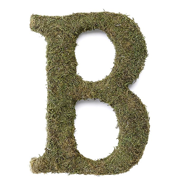 Alternate image 1 for Lillian Rose™ Moss Monogram Letter \