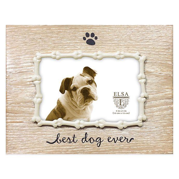 Elsa L 4 Inch X 6 Inch Best Dog Ever Sentiment Frame In Ivory