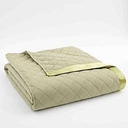 Micro Flannel® Quilted Satin-Trimmed Twin Blanket in Meadow