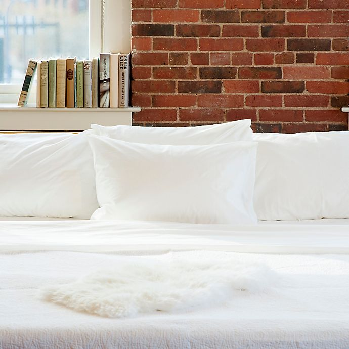 Alternate image 1 for Beantown Bedding Laundry-Free Linens Luxury Disposable Cot Sheet Set