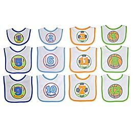 Neat Solutions® 12-Piece Monthly Milestone Bib Set in Blue/Green