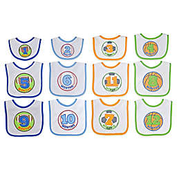 Neat Solutions® 12-Piece Monthly Milestone Bib Set in Blue/Green