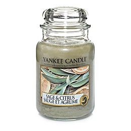 Yankee Candle® Sage & Citrus™ Large Classic Jar Candle