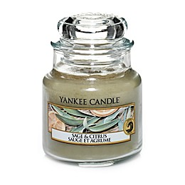 Yankee Candle® Sage & Citrus™ Small Classic Jar Candle