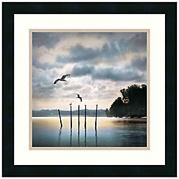 William Vanscoy Circling Skies 18-Inch x 18-Inch Framed Print Wall Art