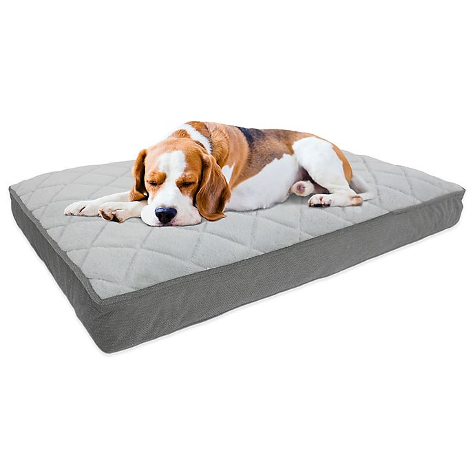 Alternate image 1 for Therapedic® Memory Foam Pet Bed in Charcoal