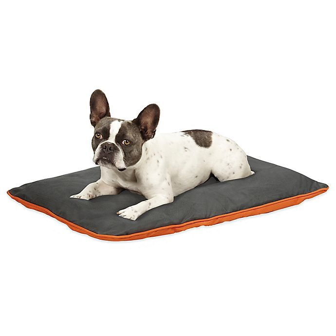 Alternate image 1 for Insect Shield Medium Reversible Pet Bed