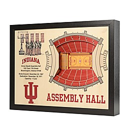 Indiana University Stadium Views Wall Art