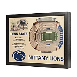 Penn State University Stadium Views Wall Art