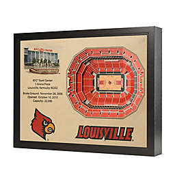 University of Louisville Stadium Views Wall Art