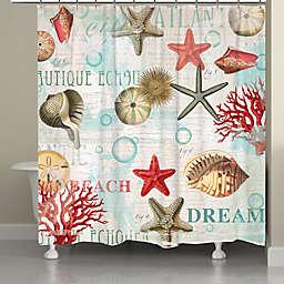 Laural Home® Dream Beach Shells Shower Curtain