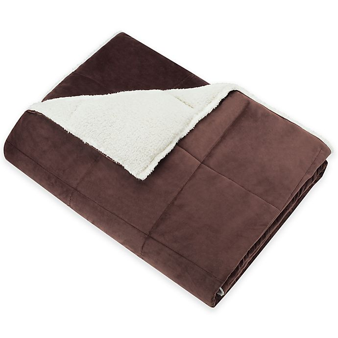 Alternate image 1 for SoSoft™ Plush Throw in Brown