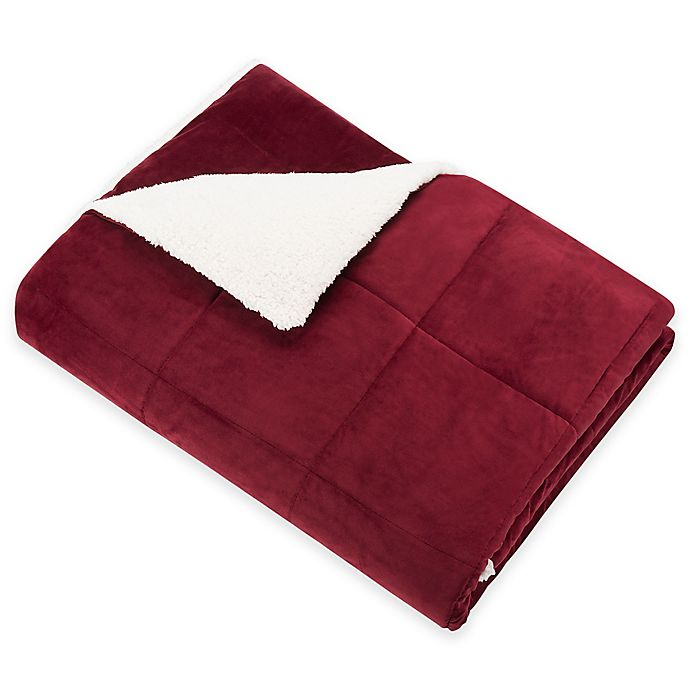 Alternate image 1 for SoSoft™ Plush Throw in Red
