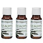 PureGuardian® 3-Pack 1 oz. Eucalyptus Aroma Essence Oil