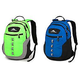 High Sierra® Opie 18.5-Inch Backpack