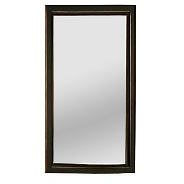 Southern Enterprises  Roxburgh 22-Inch x 36-Inch Rectangular Wall Mirror in Black