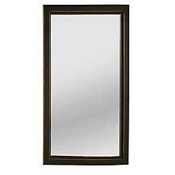 Southern Enterprises  Roxburgh 22-Inch x 36-Inch Rectangular Wall Mirror in Black